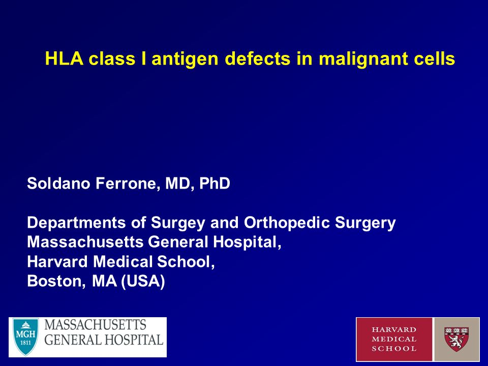 Soldano Ferrone, MD, PhD Departments of Surgey and Orthopedic Surgery Massachusetts General Hospital, Harvard Medical School, Boston, MA (USA) HLA class I antigen defects in malignant cells