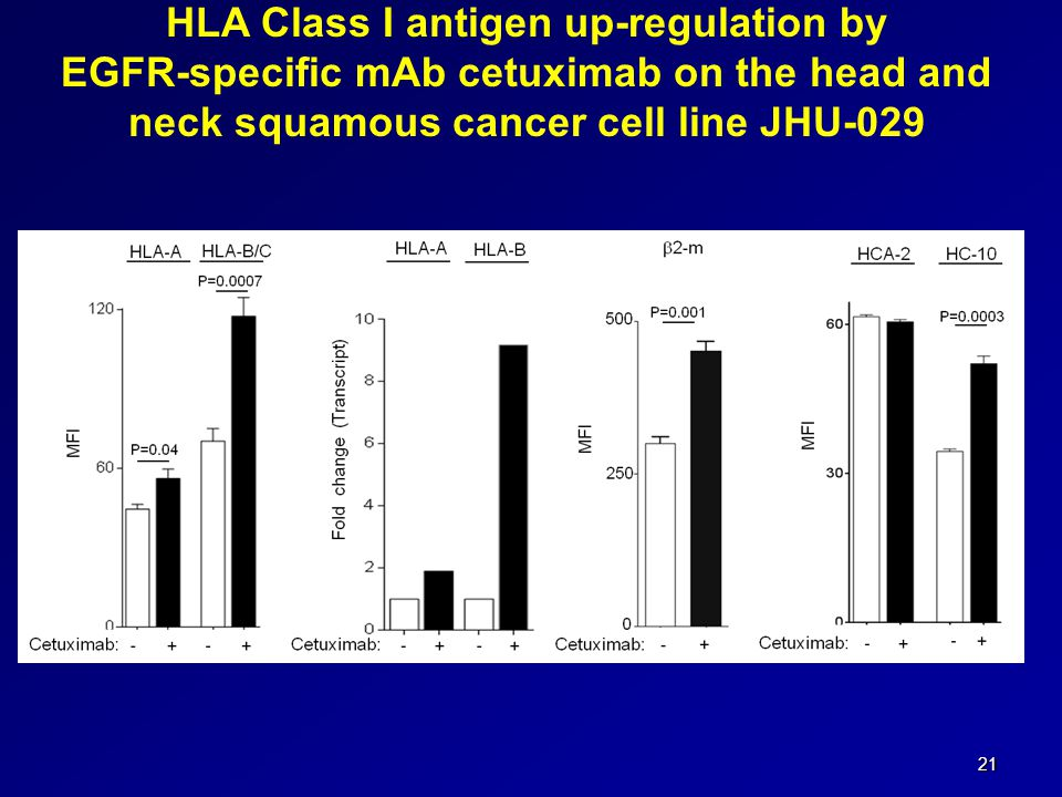 21 HLA Class I antigen up-regulation by EGFR-specific mAb cetuximab on the head and neck squamous cancer cell line JHU-029
