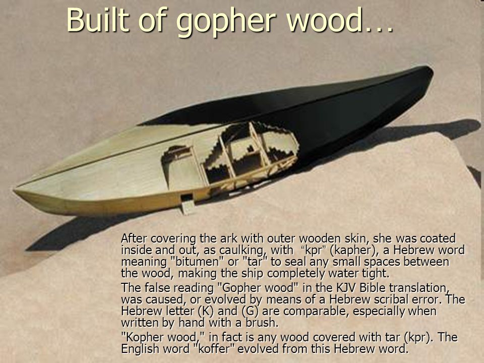 """Built of gopher wood … After covering the ark with outer wooden skin, she was coated inside and out, as caulking, with """" kpr """" (kapher), a Hebrew word"""