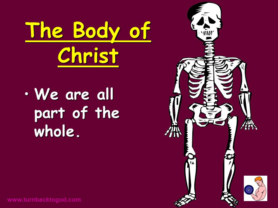 The Body is a Metaphoric Concept It contains a wealth of information in one term.It contains a wealth of information in one term.