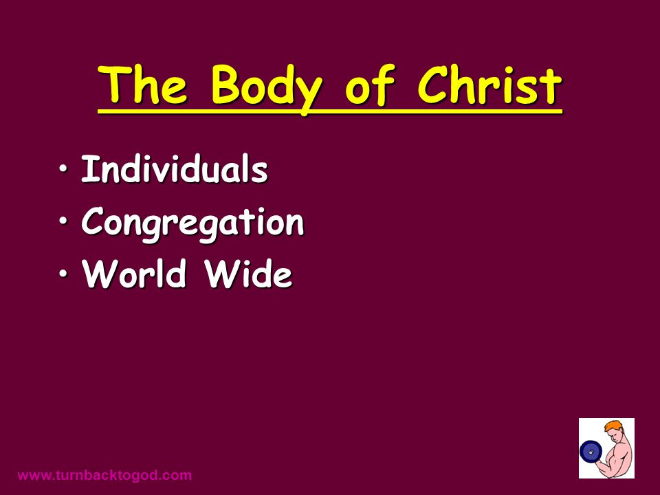 The Body of Christ IndividualsIndividuals CongregationCongregation World WideWorld Wide www.turnbacktogod.com