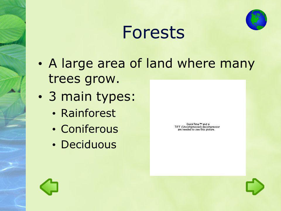 Forests A large area of land where many trees grow. 3 main types: Rainforest Coniferous Deciduous