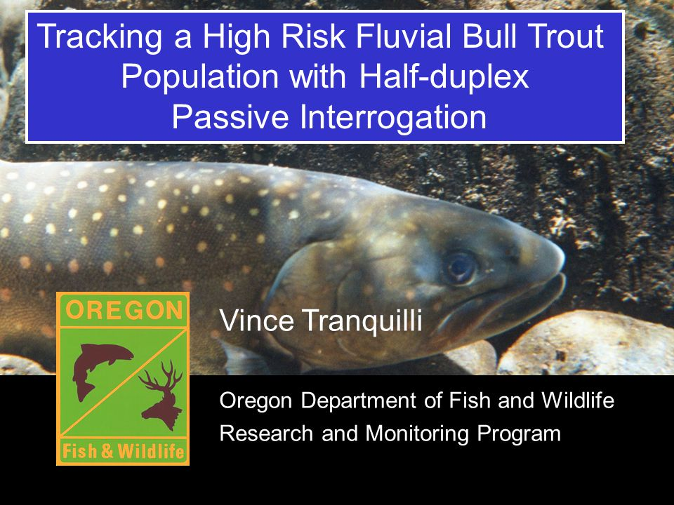 Title Tracking a High Risk Fluvial Bull Trout Population with Half-duplex Passive Interrogation Vince Tranquilli Oregon Department of Fish and Wildlif