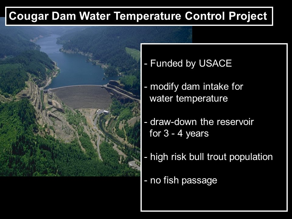 Project - Funded by USACE - modify dam intake for water temperature - draw-down the reservoir for 3 - 4 years - high risk bull trout population - no f