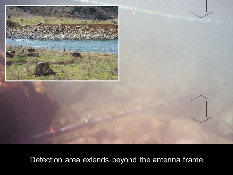 SC Detection area extends beyond the antenna frame