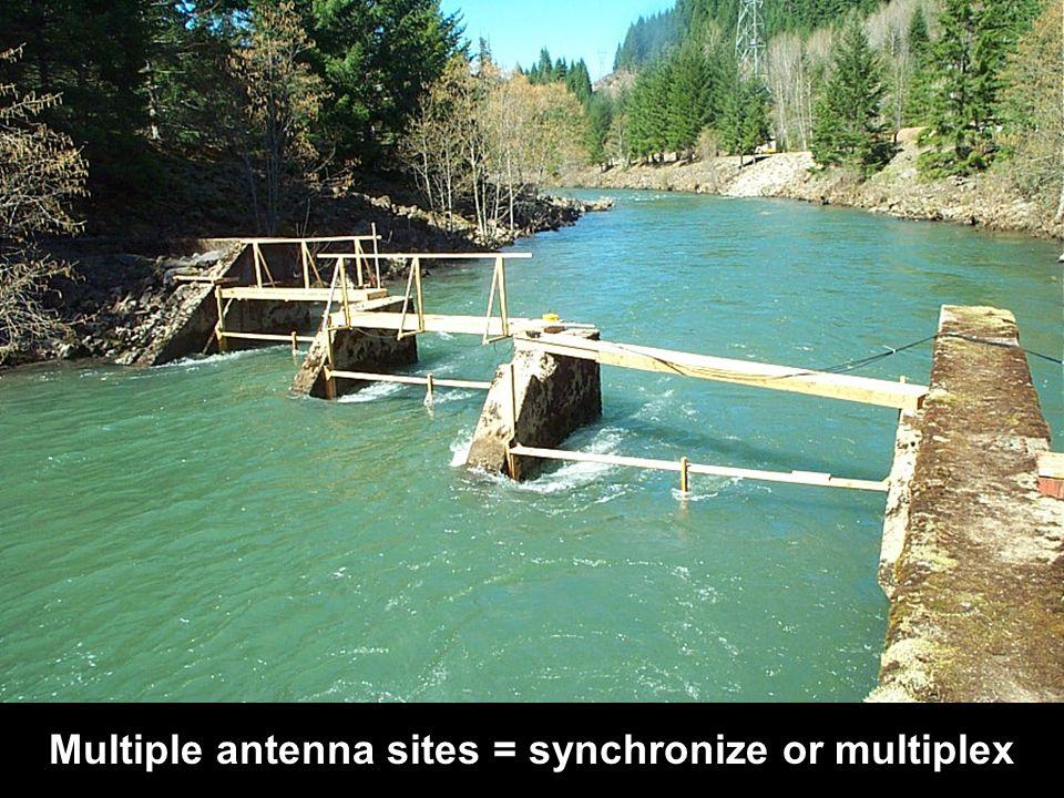 multiple antennas Multiple antenna sites = synchronize or multiplex