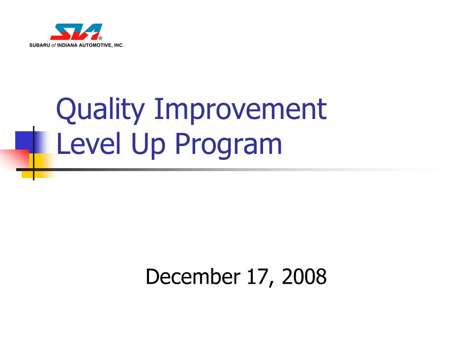 Quality Improvement Level Up Program December 17, 2008