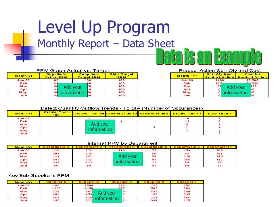 Level Up Program Monthly Report – Data Sheet Add your information
