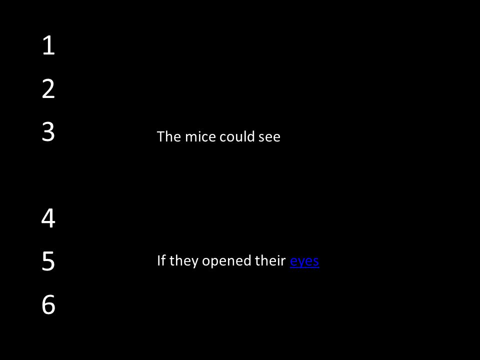 123456123456 eyes The mice could see