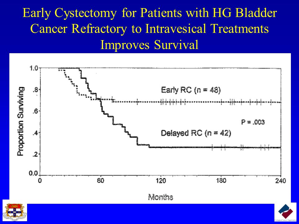 Early Cystectomy for Patients with HG Bladder Cancer Refractory to Intravesical Treatments Improves Survival