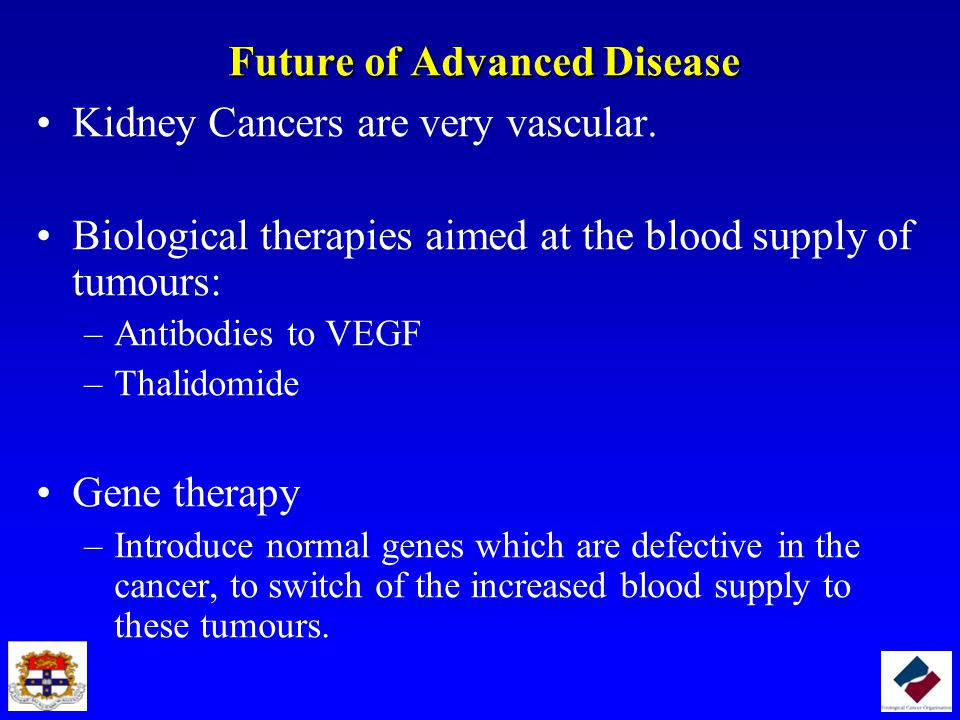 Future of Advanced Disease Kidney Cancers are very vascular.