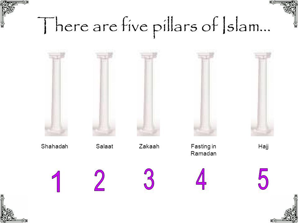 There are five pillars of Islam… ShahadahSalaatZakaahFasting in Ramadan Hajj