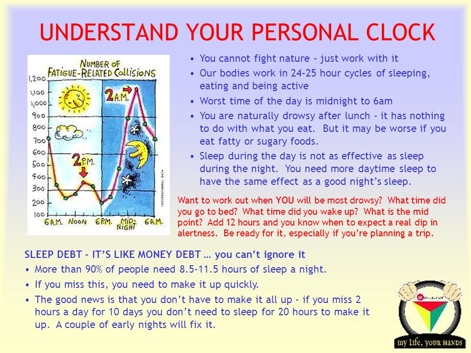 Transportation Tuesday UNDERSTAND YOUR PERSONAL CLOCK You cannot fight nature - just work with it Our bodies work in 24-25 hour cycles of sleeping, eating and being active Worst time of the day is midnight to 6am You are naturally drowsy after lunch - it has nothing to do with what you eat.