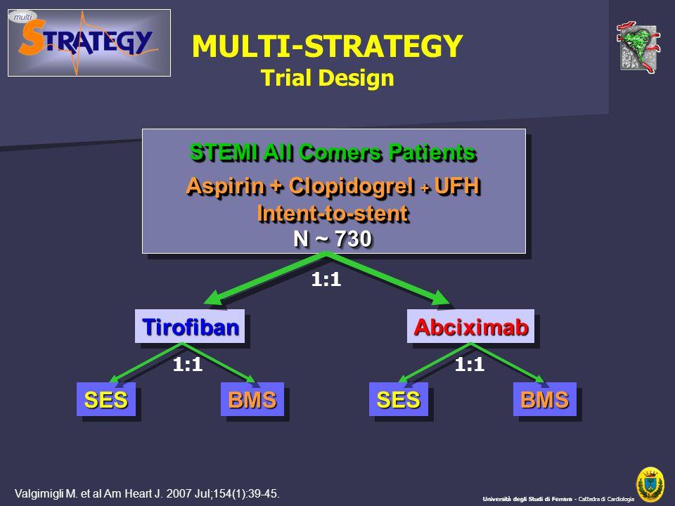 STEMI All Comers Patients Aspirin + Clopidogrel + UFH Intent-to-stent Intent-to-stent N ~ 730 TirofibanTirofibanAbciximabAbciximab SESSESBMSBMS MULTI-