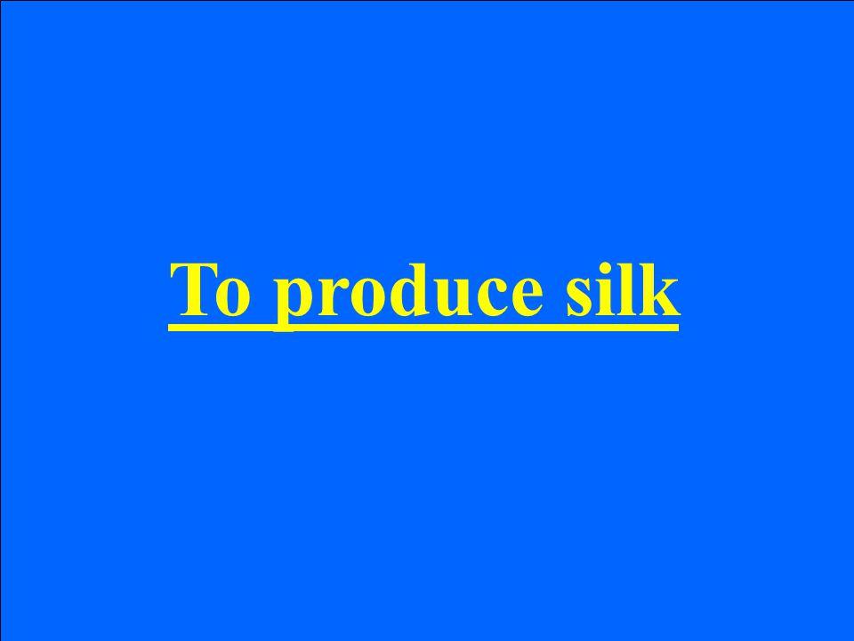 To produce silk