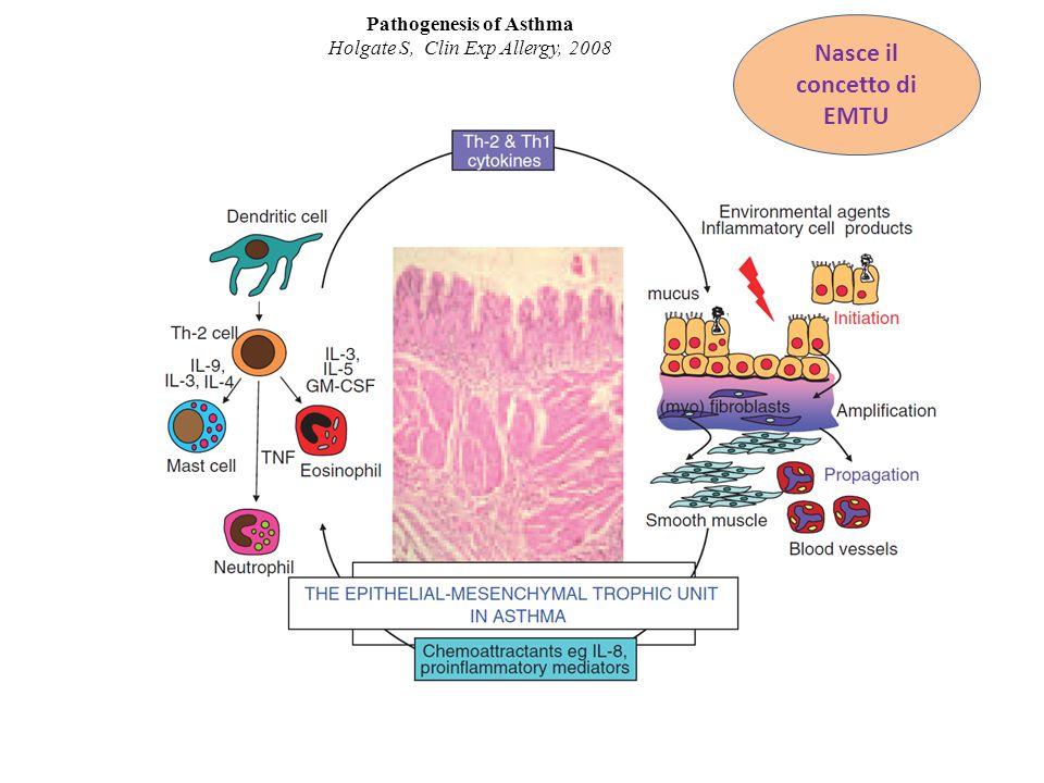 The basics of epithelial-mesenchymal transition Kalluri R, Weinbergjj R, J Clin Invest. 2009.