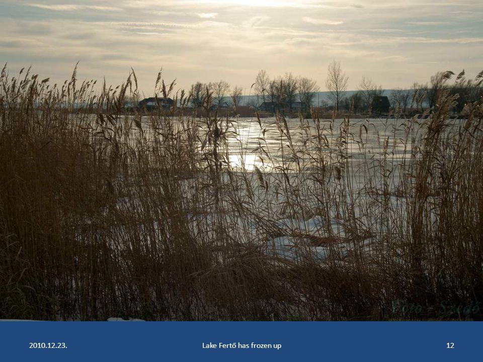 2010.12.23.Lake Fertő has frozen up11