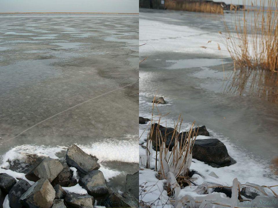 2010.12.23.Lake Fertő has frozen up12