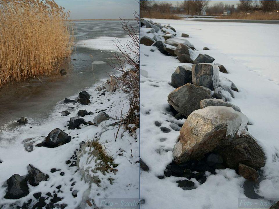 2010.12.23.Lake Fertő has frozen up13