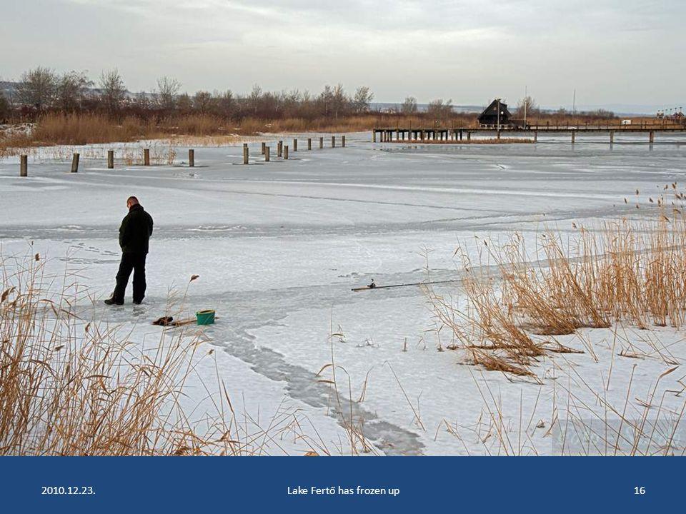 2010.12.23.Lake Fertő has frozen up15
