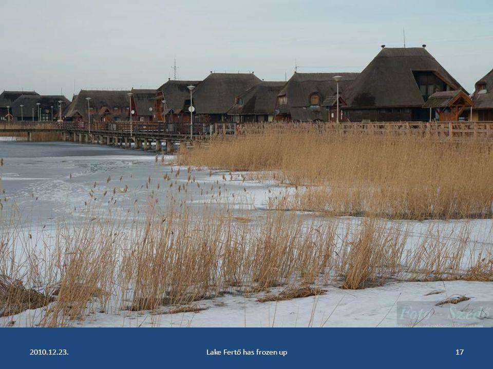2010.12.23.Lake Fertő has frozen up16