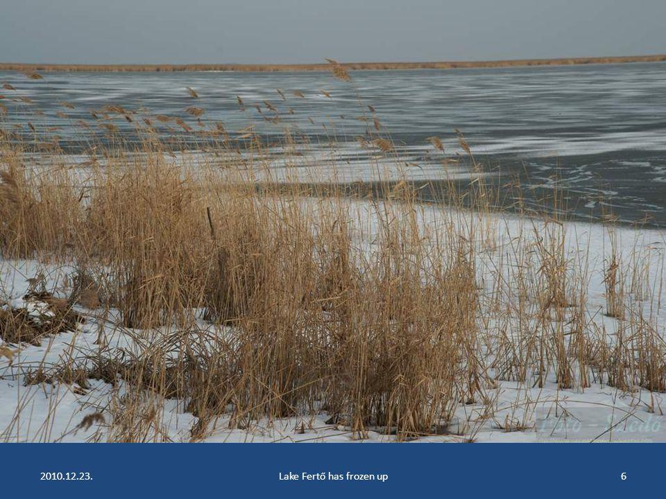 2010.12.23.Lake Fertő has frozen up5