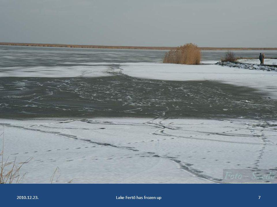 2010.12.23.Lake Fertő has frozen up6