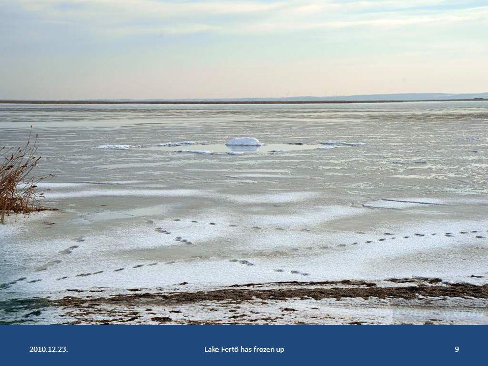 2010.12.23.Lake Fertő has frozen up8