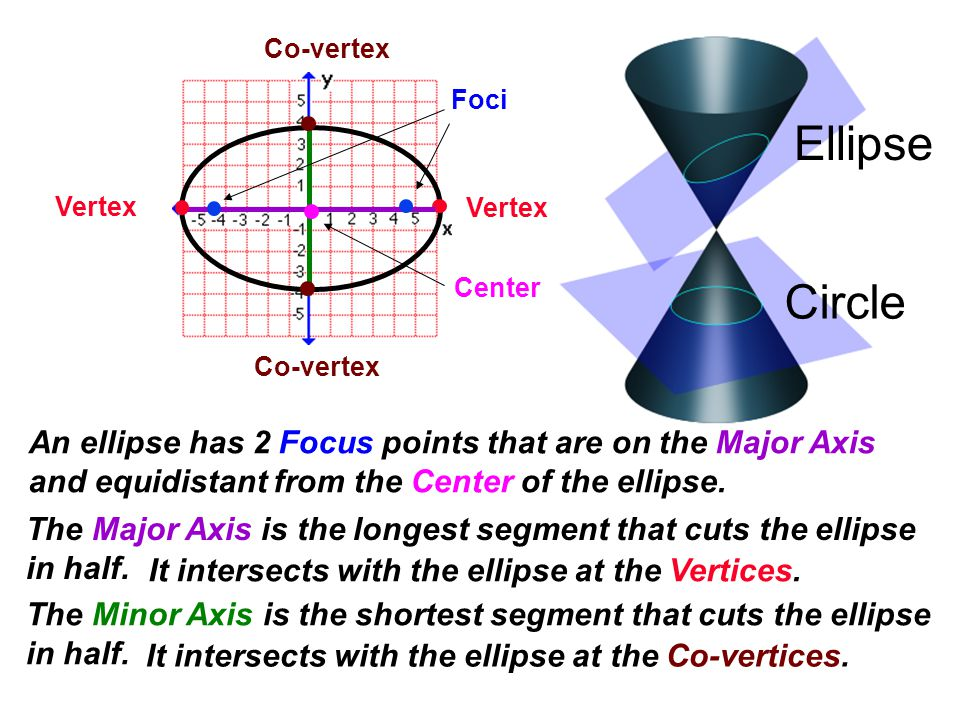 Circle Ellipse Foci Vertex Co-vertex The Major Axis is the longest segment that cuts the ellipse in half. The Minor Axis is the shortest segment that