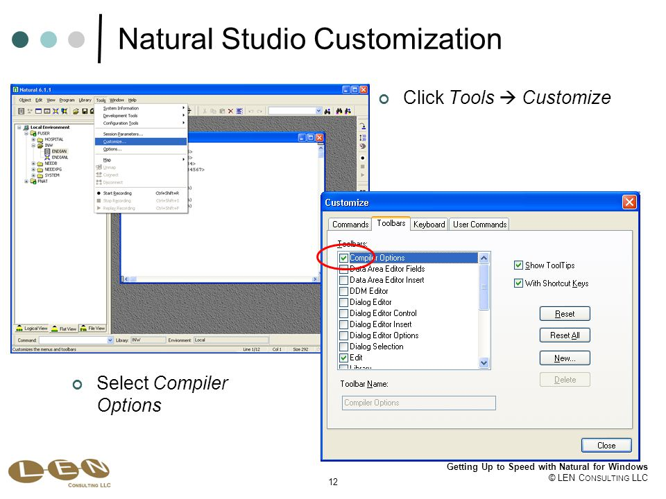 12 Getting Up to Speed with Natural for Windows © LEN C ONSULTING LLC Natural Studio Customization Click Tools  Customize Select Compiler Options
