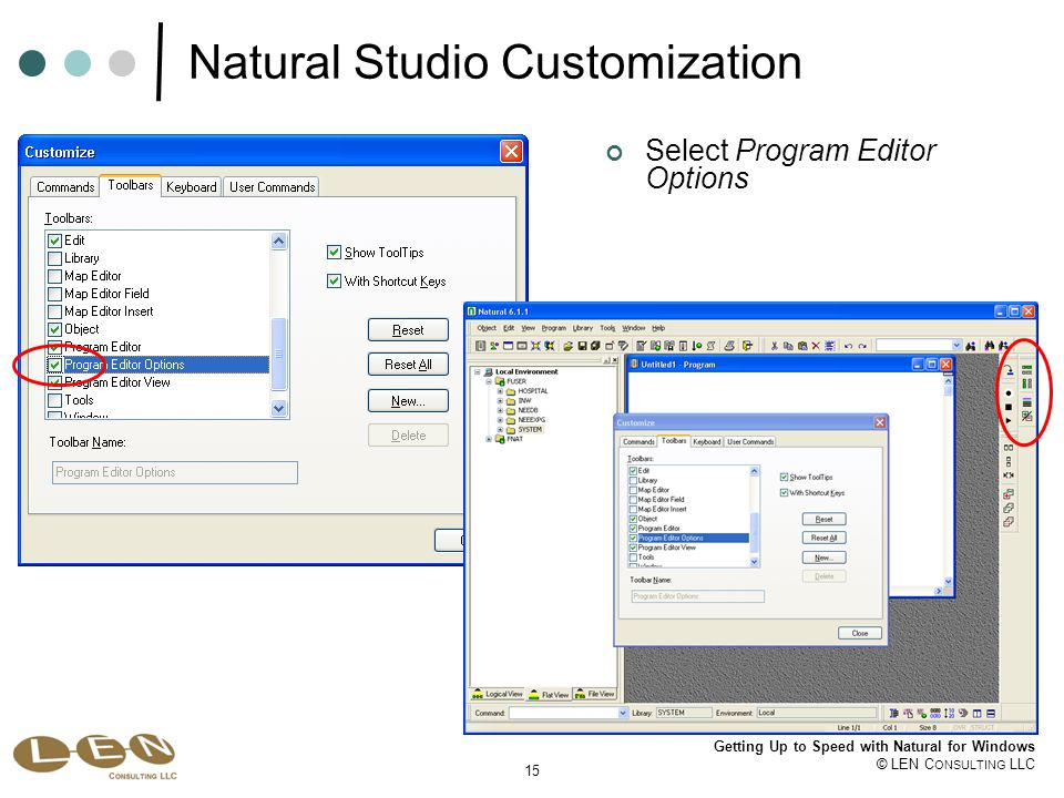 15 Getting Up to Speed with Natural for Windows © LEN C ONSULTING LLC Natural Studio Customization Select Program Editor Options