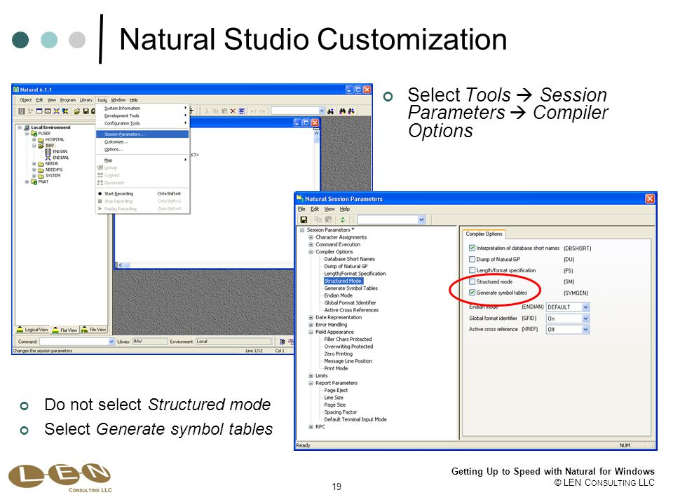 19 Getting Up to Speed with Natural for Windows © LEN C ONSULTING LLC Natural Studio Customization Select Tools  Session Parameters  Compiler Options Do not select Structured mode Select Generate symbol tables