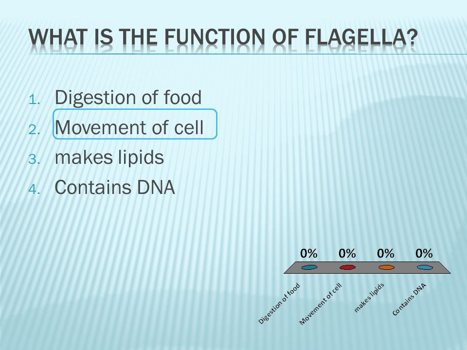 1. Digestion of food 2. Movement of cell 3. makes lipids 4. Contains DNA