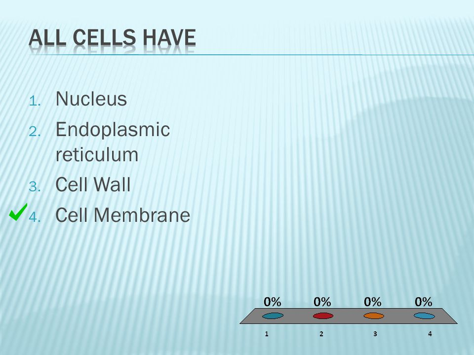 1. Nucleus 2. Endoplasmic reticulum 3. Cell Wall 4. Cell Membrane