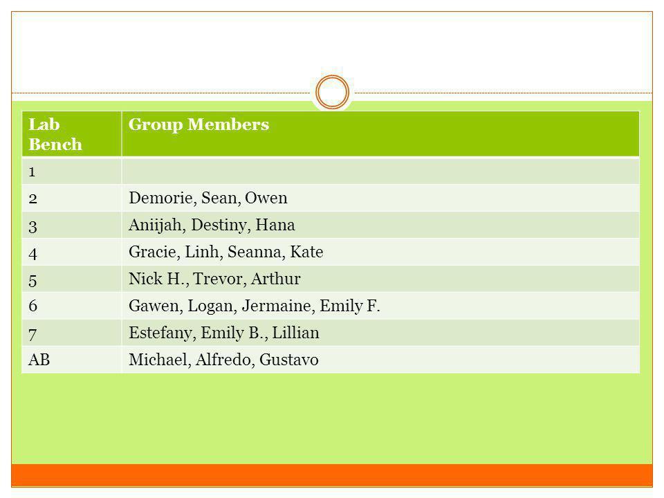 Lab Bench Group Members 1 2Demorie, Sean, Owen 3Aniijah, Destiny, Hana 4Gracie, Linh, Seanna, Kate 5Nick H., Trevor, Arthur 6Gawen, Logan, Jermaine, Emily F.