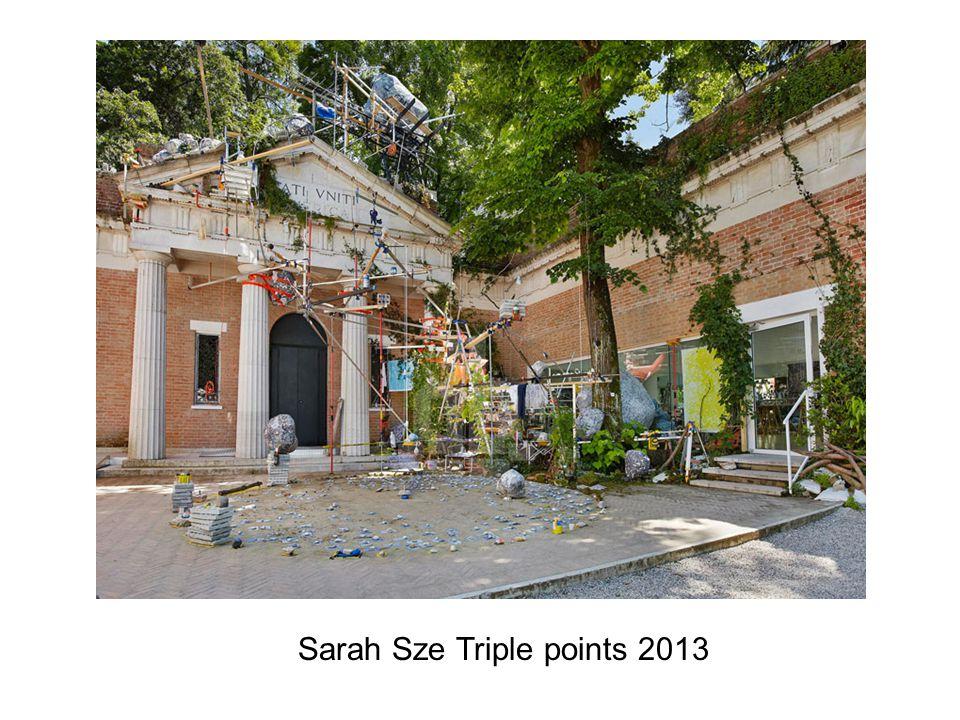 Sarah Sze Triple points 2013