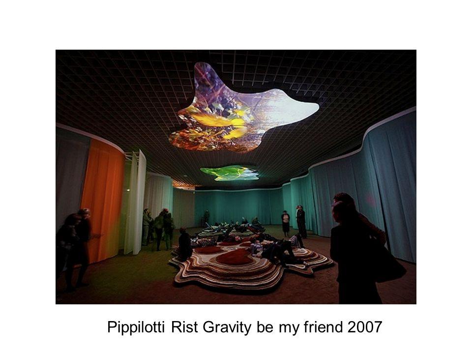 Pippilotti Rist Gravity be my friend 2007