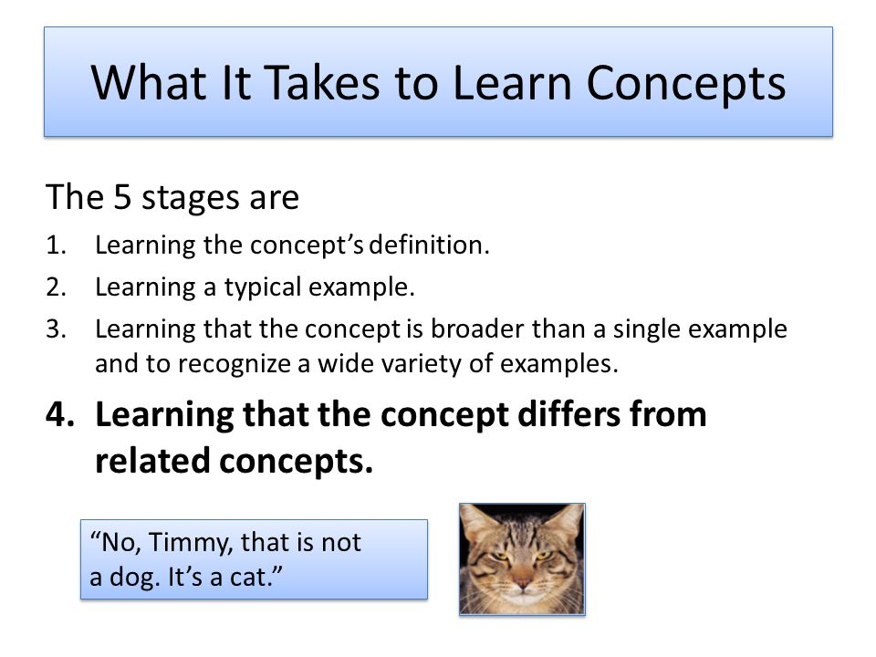 What It Takes to Learn Concepts The 5 stages are 1.Learning the concept's definition.