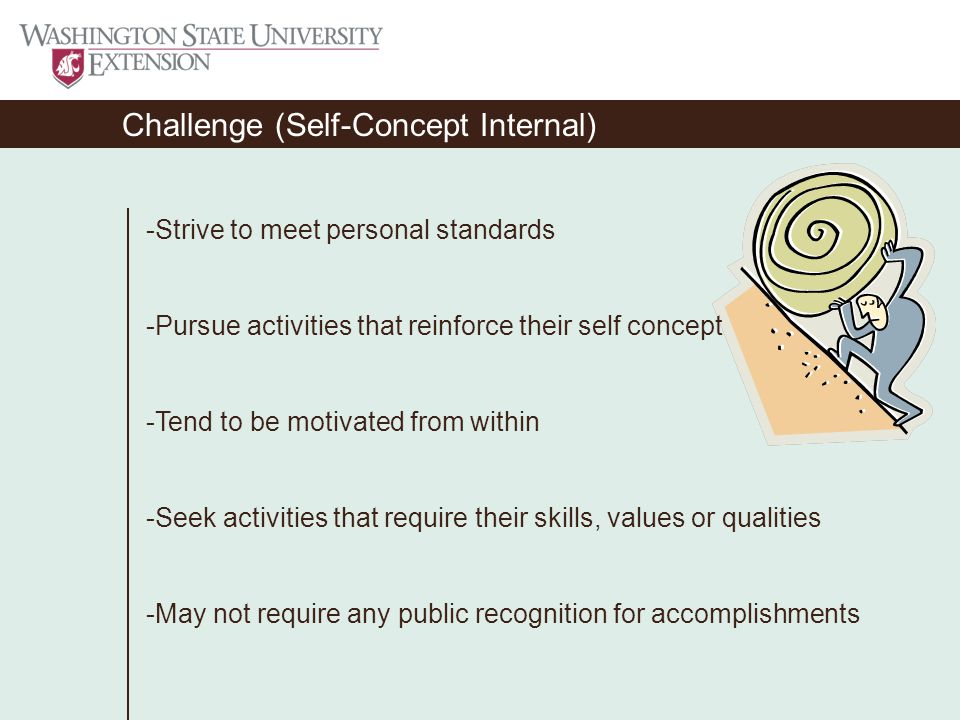 Challenge (Self-Concept Internal) -Strive to meet personal standards -Pursue activities that reinforce their self concept -Tend to be motivated from within -Seek activities that require their skills, values or qualities -May not require any public recognition for accomplishments