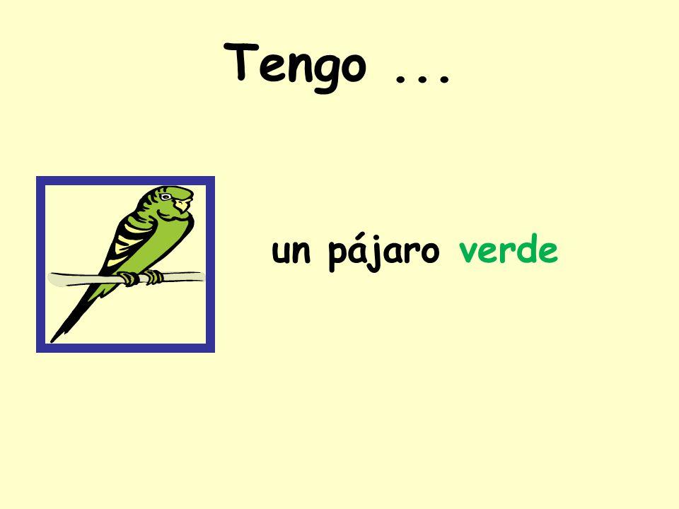 Tengo... un pájaro verde