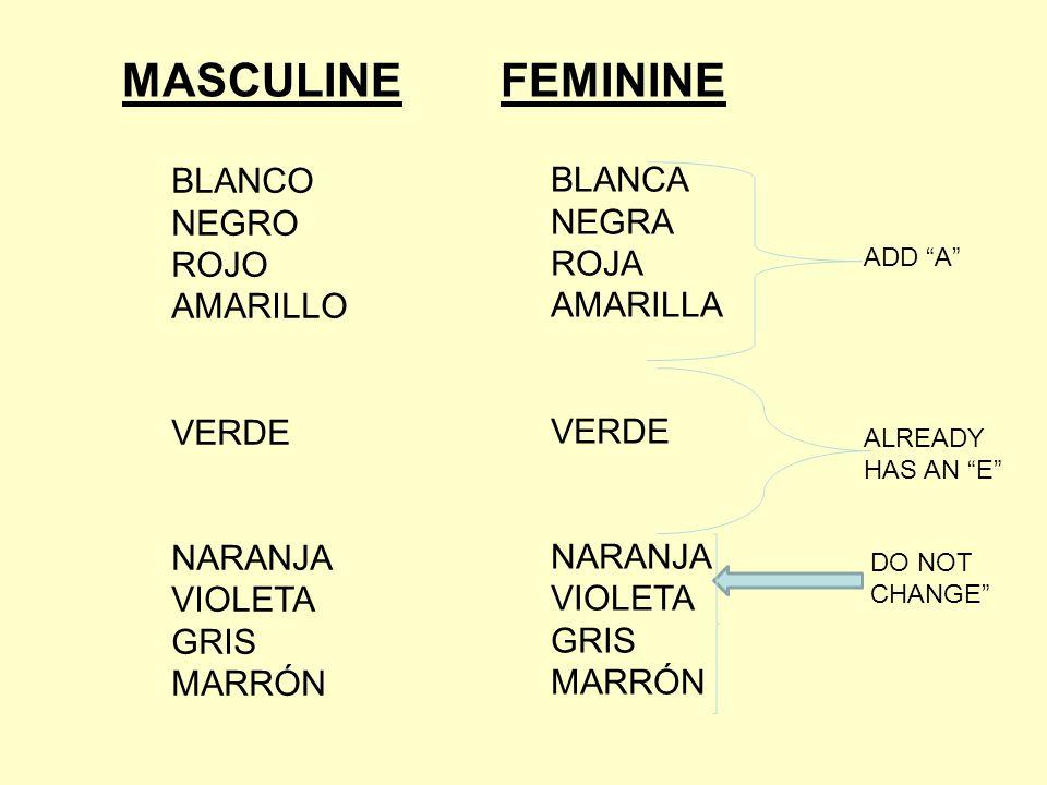 MASCULINE FEMININE BLANCO NEGRO ROJO AMARILLO VERDE NARANJA VIOLETA GRIS MARRÓN BLANCA NEGRA ROJA AMARILLA VERDE NARANJA VIOLETA GRIS MARRÓN ADD A ALREADY HAS AN E DO NOT CHANGE
