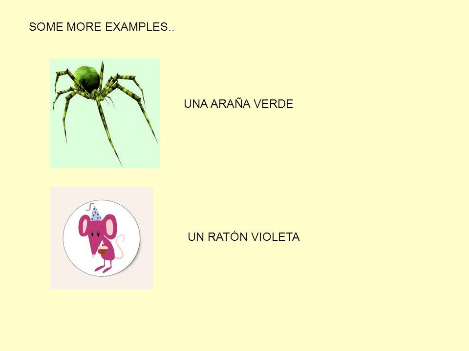 SOME MORE EXAMPLES.. UNA ARAÑA VERDE UN RATÓN VIOLETA
