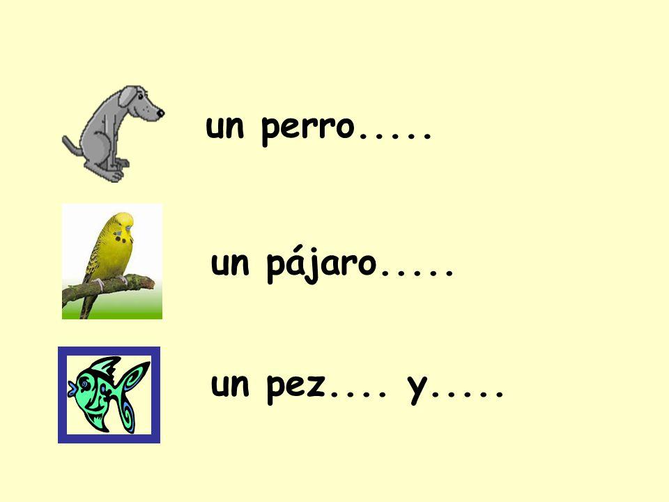 un pájaro..... un perro..... un pez.... y.....