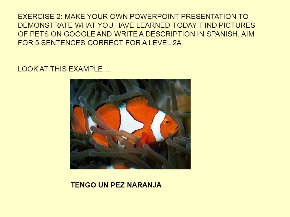 EXERCISE 2: MAKE YOUR OWN POWERPOINT PRESENTATION TO DEMONSTRATE WHAT YOU HAVE LEARNED TODAY.
