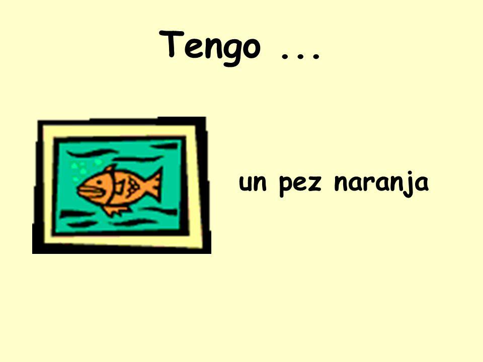 Tengo... un pez naranja