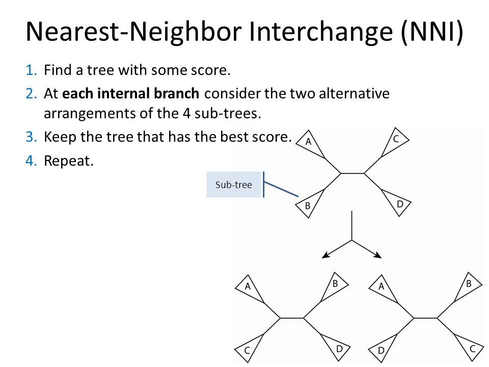 Nearest-Neighbor Interchange (NNI) Sub-tree 1.Find a tree with some score.