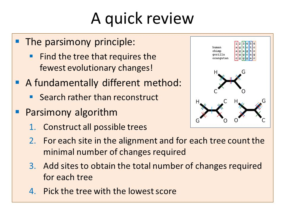  The parsimony principle:  Find the tree that requires the fewest evolutionary changes.
