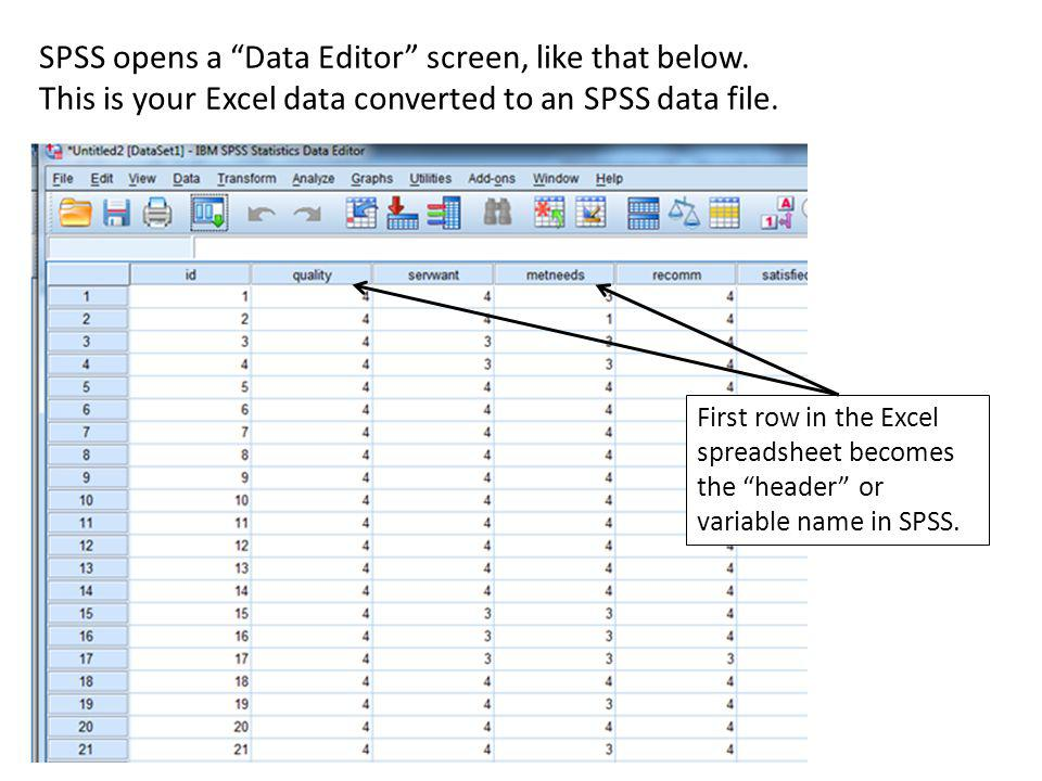 SPSS opens a Data Editor screen, like that below.