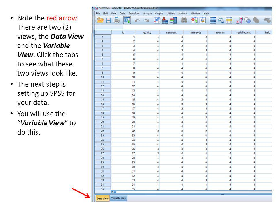 Note the red arrow. There are two (2) views, the Data View and the Variable View.