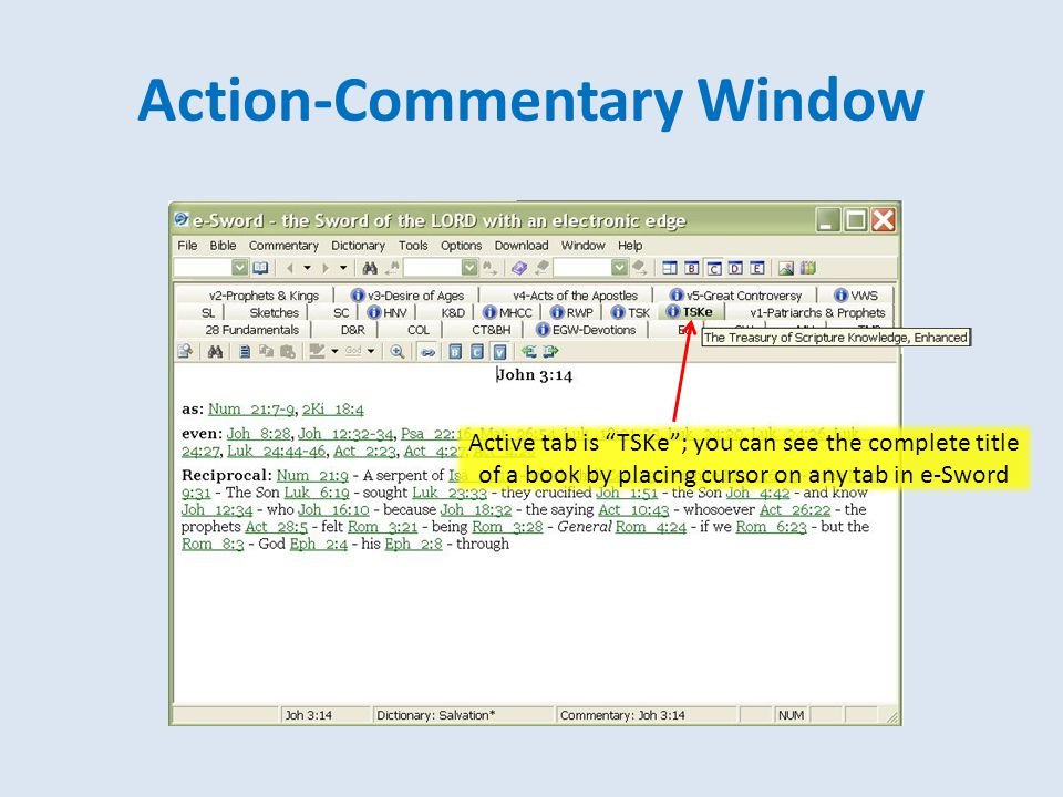 """Action-Commentary Window Active tab is """"TSKe""""; you can see the complete title of a book by placing cursor on any tab in e-Sword"""